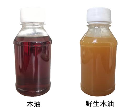 野生木油VS木油